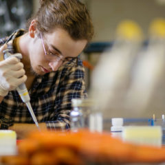 Student in chemistry lab