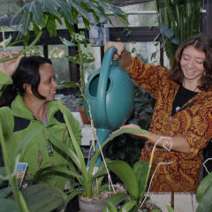 Professor Alisa Hove with student in greenhouse
