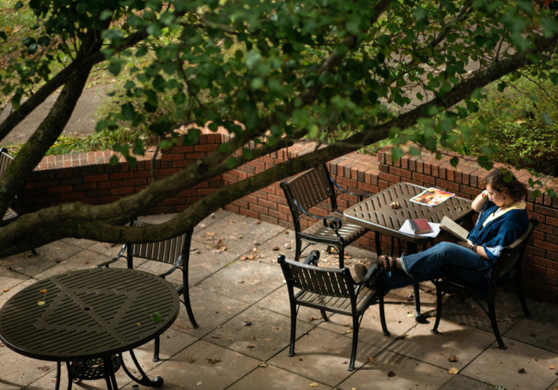 Student reads on Sunderland patio