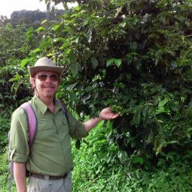 David O Bradshaw with coffee plant