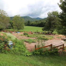 A number of new Warren Wilson College first-year and transfer students spent Service Day working at Verner Experiential Gardens, a partnership between the College, Verner Early Learning Center, The Roots Foundation and North Carolina Outward Bound School.