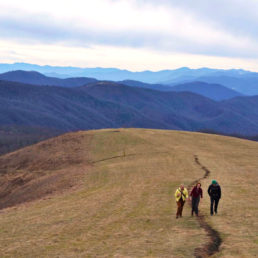 Hikers on mountain bald