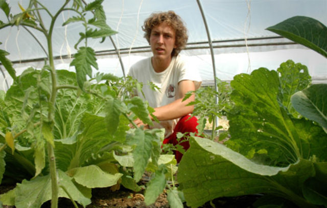 Watters takes a hands-on approach to his sustainable agriculture studies by working in the college garden.